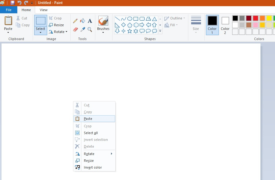 """Right right click the blank, default canvas and select """"Paste"""""""